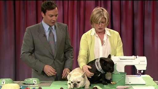 [Martha Stewart's Frisky French Bulldogs]