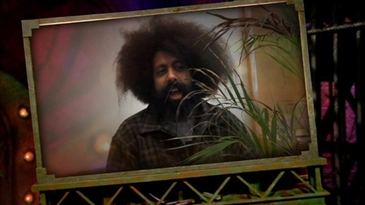 Internet Personality Test: Reggie Watts Video